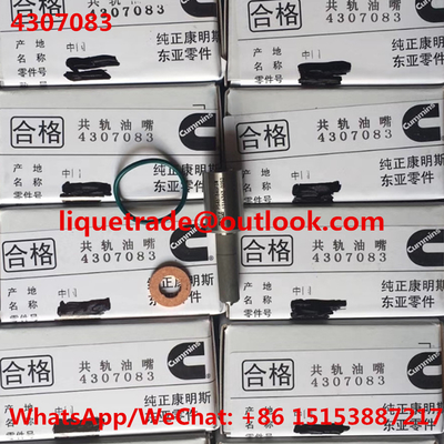 China CUMMINS provê de bocal 4307083, P5461846FSW, 5406060 originais e brandnew distribuidor